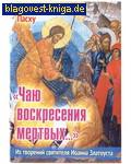 Приход храма Святаго Духа сошествия Чаю воскресения мертвых... Из творений святителя Иоанна Златоуста